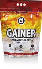 Gainer Professional Mass  5000 г