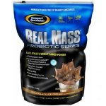 Real Mass Probiotic  5480 г